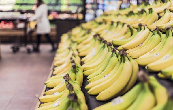 sector alimentacion