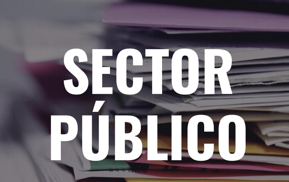 Informe 2020 sobre el secto publico